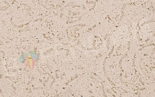 质感漆(刮砂)中玫瑰纹效果SE-105